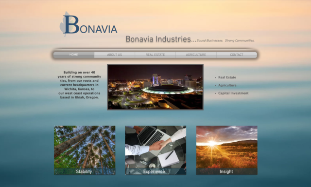 Bonavia Properties Old Website